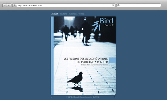 job_Bird Consult_firstlook